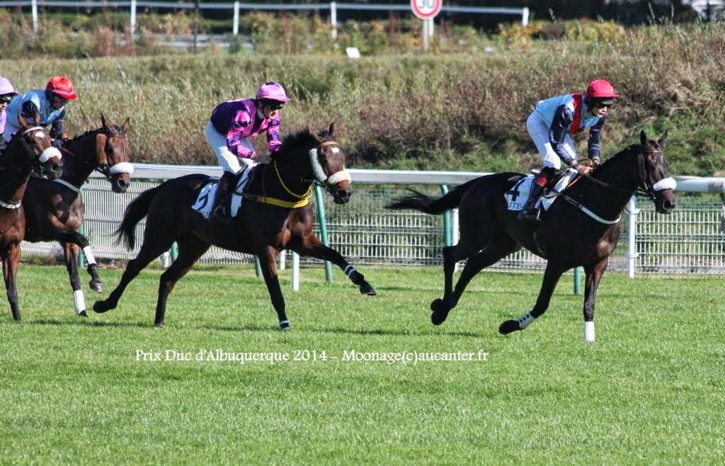 Photos Auteuil 18-10-2014 IMG_4899