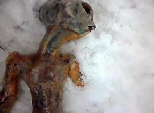 Toten Auslnder Der Sich In Sibirien 2011
