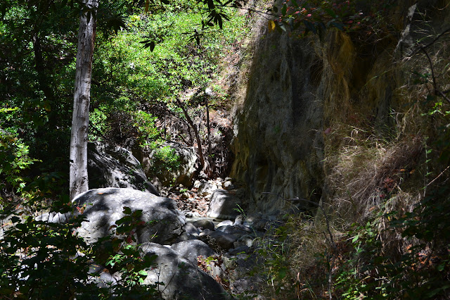 cliff wall by a turn in the creek