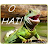 Jaymie Sanfilippo avatar image