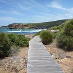 Timber boardwalk near Pinneys Beach in the Wallarah Pennisula (388040)