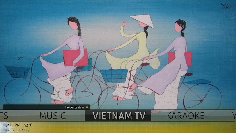 Vietnamese TV for XBMC - Karaoke System Discussion