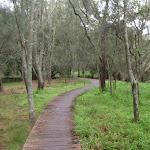 Boardwalk east of Mowbray Park (55826)