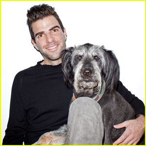Zachary Quinto and his dog 3