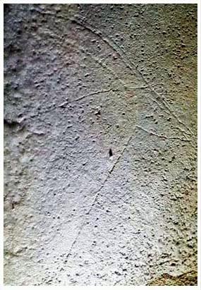 Arte rupestre en las Grutas de Gargas