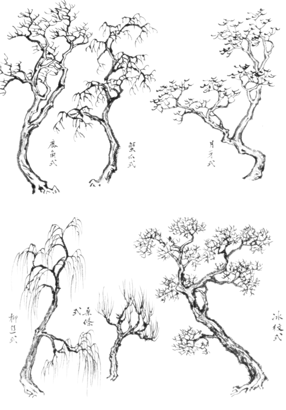 how to draw asian trees