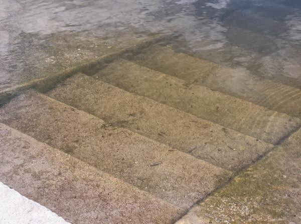 Мальки в реке Тимок