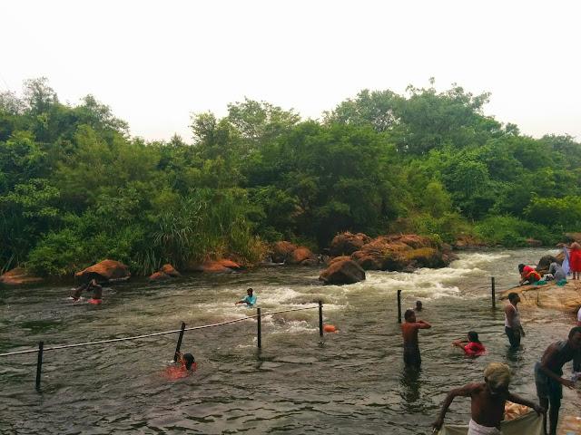 Thamarabarani river at Papanasam