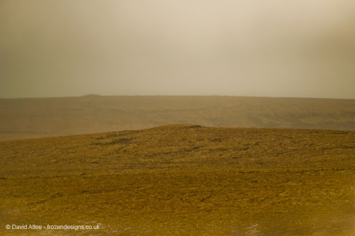 Moorland in the mist
