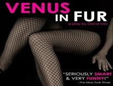 فيلم Venus in Fur