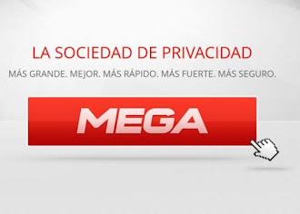La seguridad de MEGA, a debate