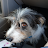 Kyle Garcia avatar image