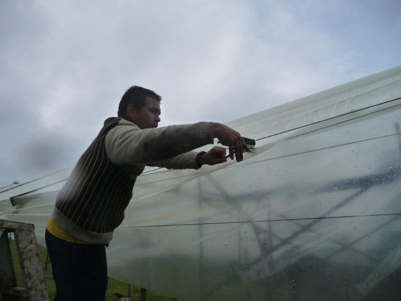Granja Peniel Workshop: February 2011