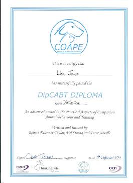 COAPE diploma certificate