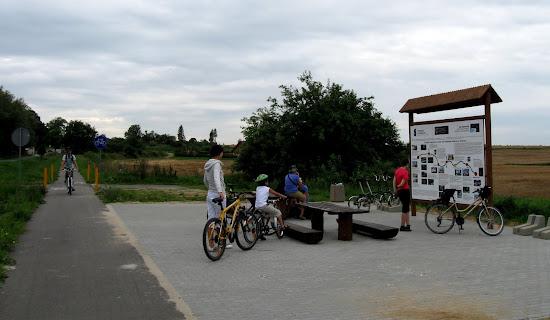 rodziny z dziećmi na trasie rowerowej