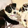 Kathy Eker