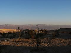 ז אדר תשע ב בבית חגלה ועל גדות הירדן