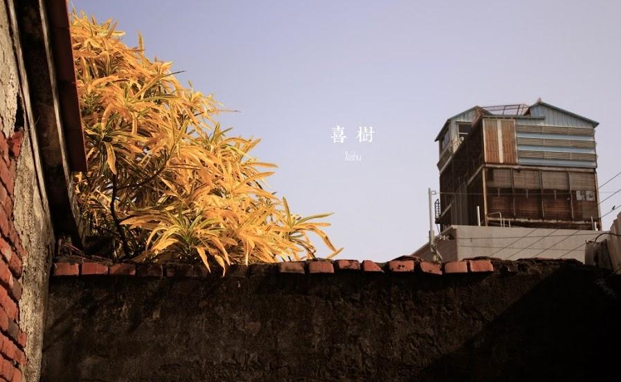 台南景點,喜樹社區