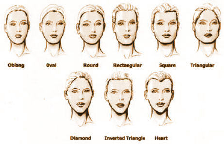 The image above shows some common face shapes people have.
