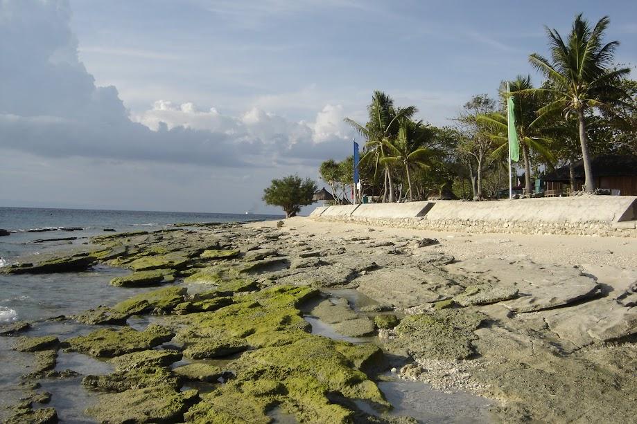 Exploring Bohol island