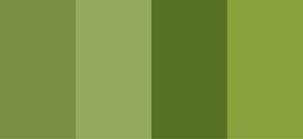 Canzutopia Olive Green Newlywed 39 S Room