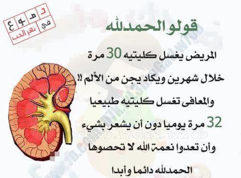 اقرأ وقل الحمد لله 230214_519553554735212_1325923381_n