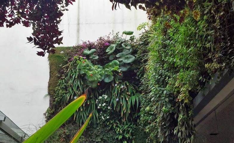 Jardín vertical Buenos Aires