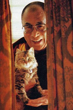 The Dalai Lama and a cat