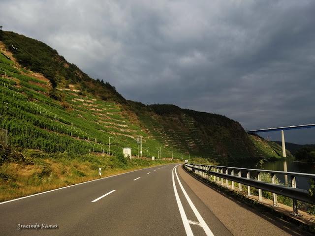 passeando - Passeando pela Suíça - 2012 - Página 21 DSC08598