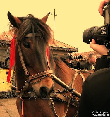 martie 2009 în Târgovişte la sărbătoarea Paştele Cailor