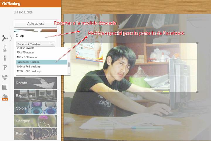 editar fotos online con picmonke
