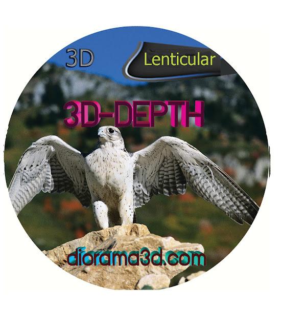software 3D Lenticular