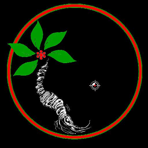 Trung Phan