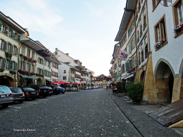 passeando - Passeando pela Suíça - 2012 - Página 15 DSC05512