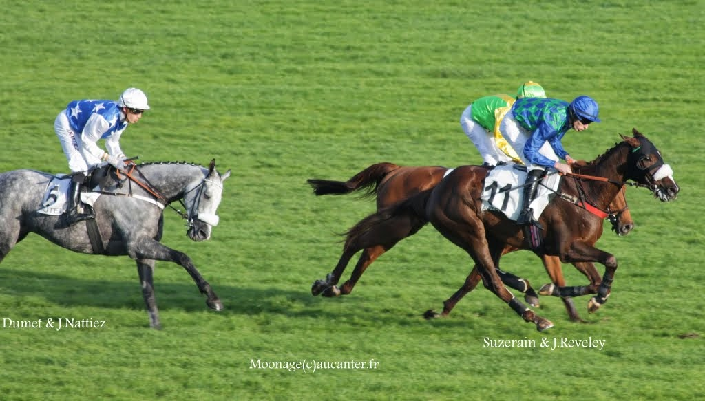 Photos Auteuil 2-11-2014 (48h de l'obstacle) IMG_5631