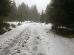 ... aber schlagartig auf der anderen Seite der Straße am Torfhaus plötzlich Schnee und Wind ...
