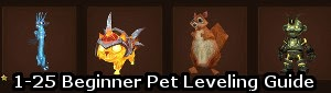 1-25 Beginner Pet Leveling Guide