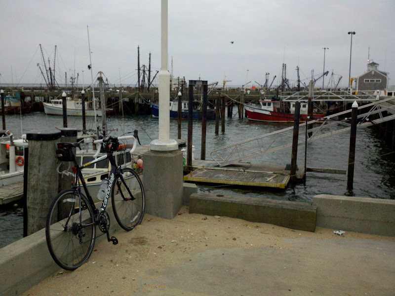 Boston to Cape Cod • Provincetown Harbor