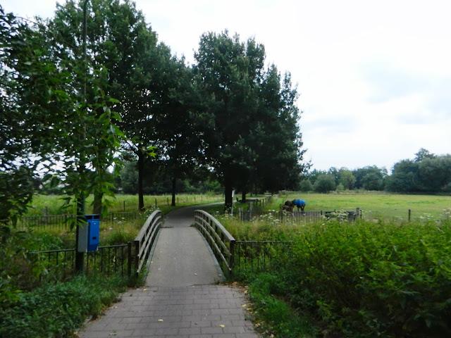 100/110km de la Campine (Kempenlandtocht; NL):1-2/8/2014 Geldrop%252C%25200203-08-13%2520067