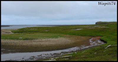 Un tour  d'Islande, au pays du feu... et des eaux. - Page 2 44-fjord%252520du%252520nord