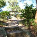 Steps near the Lane Cove River tourist park (384899)