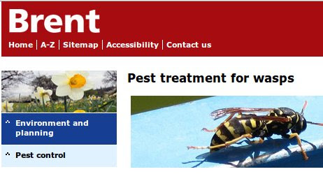 Brent Council Pest Control advice