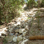 Rocky dry creek bed with bridge in Lily Pond Picnic Area in Blackbutt Reserve (401032)