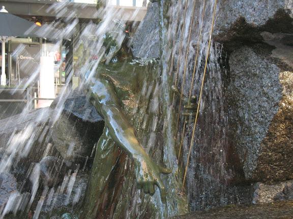 Arpista del agua en Bergen