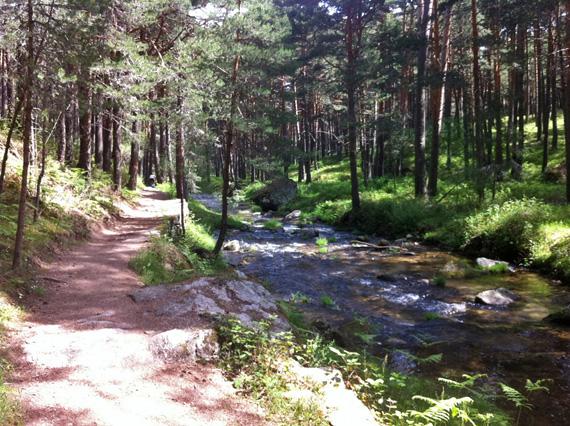 ¿Nos acompañas mañana sábado a una ruta de Cercedilla a Segovia?