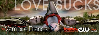 vampirediaries2 Baixar The Vampire Diaries 5ª Temporada Legendado AVI | RMVB | 720p Download