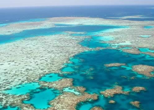 Great Barrier Reef - Local Travel Information and Guide