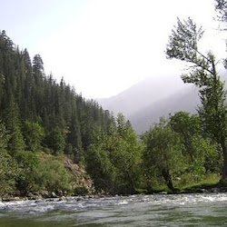 Nuristan Forest National Reserve's profile photo