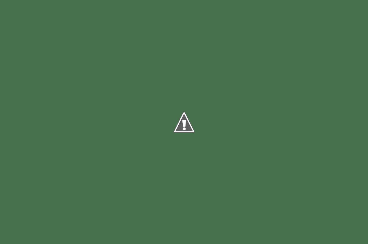 calendario 2014-2015 Marz15