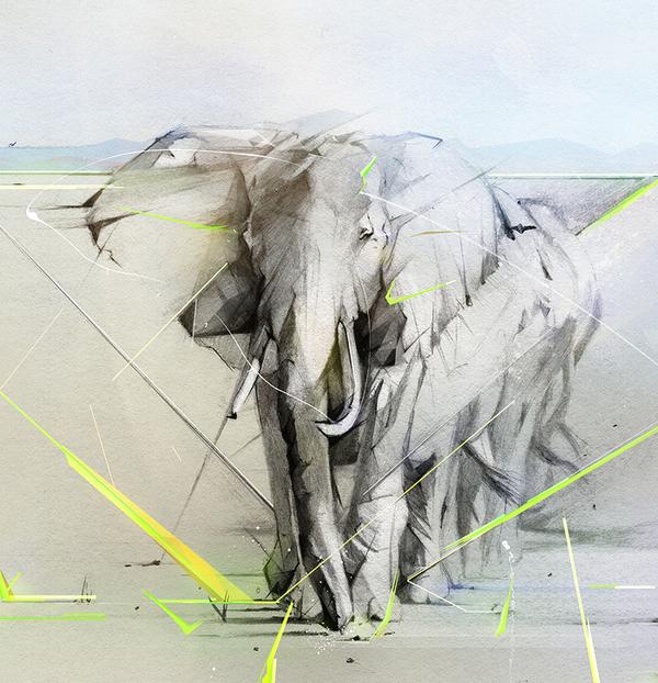 Elefante detalhe